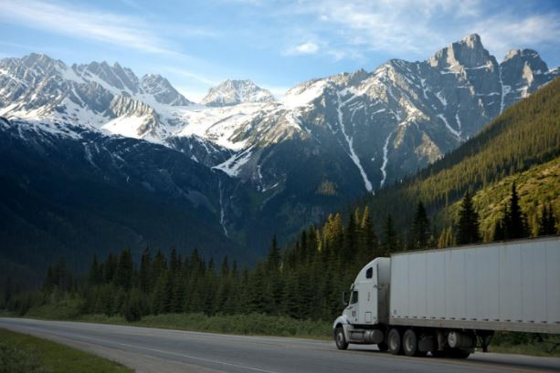Tips On How To Pick The Best Moving Company