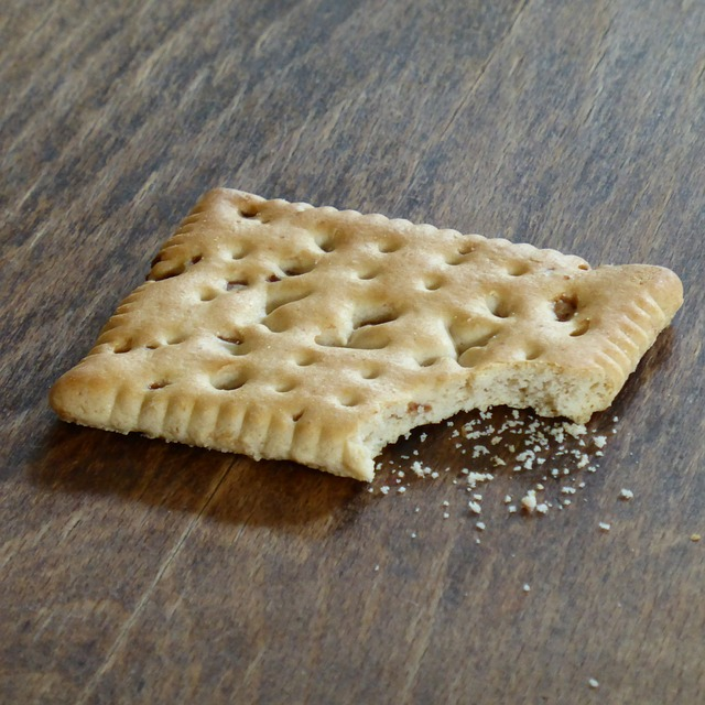 Biscuit crumbs.