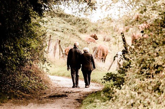 An elderly couple enjoying a walk.