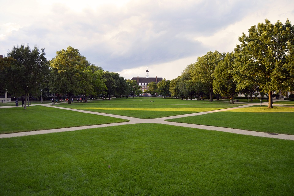 College Campus With Big Laws And Walking Trails.