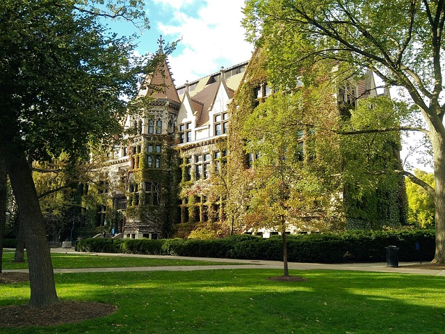 The University of Chicago which is one of the best colleges in Chicago.