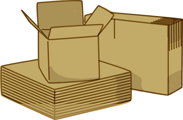 Cardboard moving boxes.